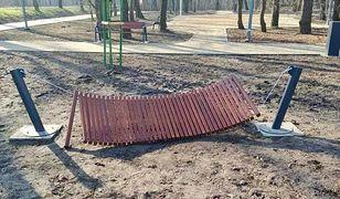 Dąbrowa Górnicza. Zniszczone hamaki w Parku Podlesie. Nie wytrzymały nawet doby