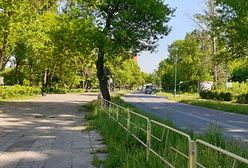 Sosnowiec. Utrudnienia dla kierowców. Na ulicy Ostrogórskiej ruch wahadłowy