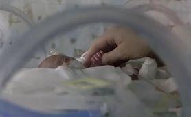 Kiedy się rodzą ważą nawet 600 gramów. Jedyny taki oddział dla wcześniaków (WIDEO)