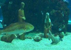 Niezwykła podwodna szopka w Monako
