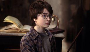 #dziejesiewkulturze: fani Harry'ego Pottera odkryli dziurę w scenariuszu. Dlaczego Hagrid tak długo zwlekał? [WIDEO]