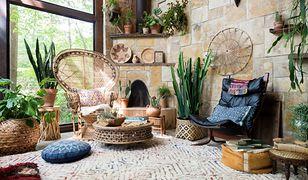 Egzotyczne rośliny! Podpowiadamy, które z nich będą czuły się dobrze w domu