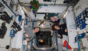 Święta w kosmosie i na krańcach świata. Jak spędzają je badacze?
