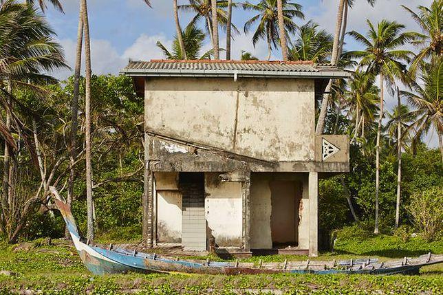 10 lat po tsunami rozdzielona rodzina znów jest razem