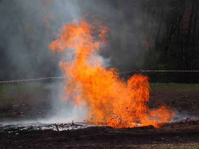 Sękowa. Ropa i gaz wytrysnęły spod ziemi.