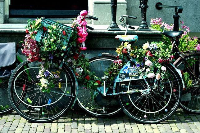 Daleko nam jeszcze do Amsterdamu, ale jest coraz lepiej!