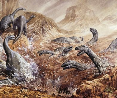 Ilustracja przedstawiająca Plateosaurusy - dinozaury, które rozszerzyły swoje terytorium po przemianach klimatu ponad 200 mln lat temu.