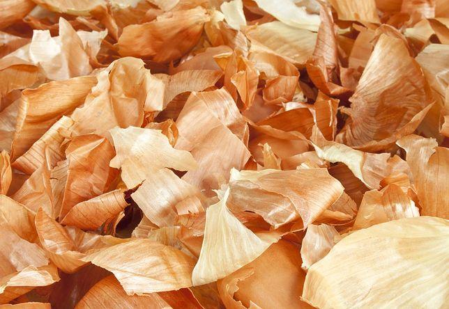 Kulinarny recykling z korzyścią dla zdrowia