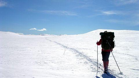 Jedziecie w góry? Te aplikacje pomogą znaleźć najlepsze szlaki i stoki