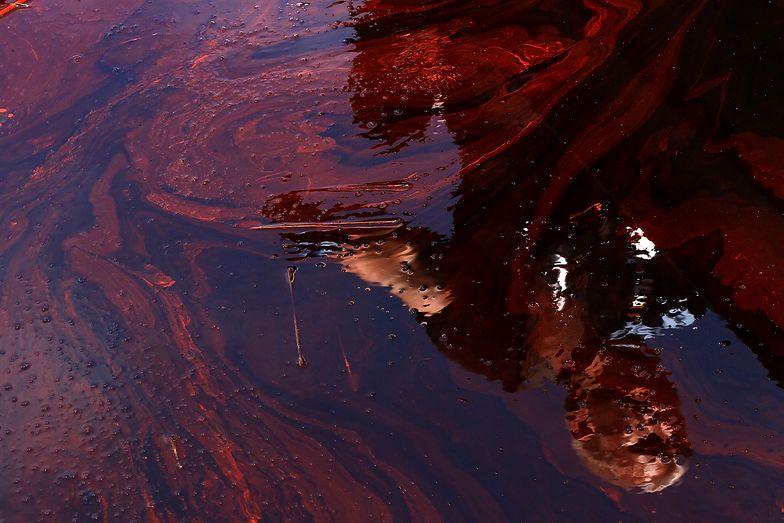 Łódzkie. Katastrofa ekologiczna. Wyciekły tysiące litrów ropy
