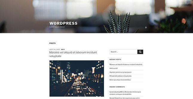 Wygenerowana witryna testowa na WordPressie