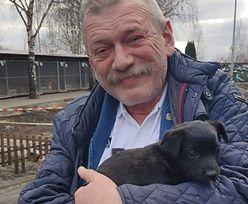 Wójt adoptował psa. Pięć dni później zwrócił go do schroniska
