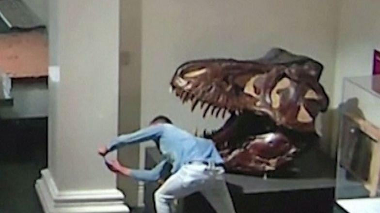 Australia. 25-letni student nocą włamał się do muzeum w Sydney