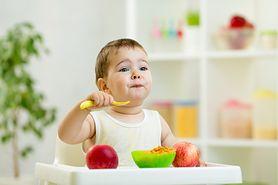 Jak przygotować zdrowy i odżywczy obiad dla małego dziecka?