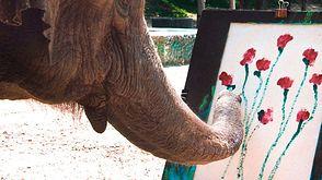 Mój szczęśliwy słoń