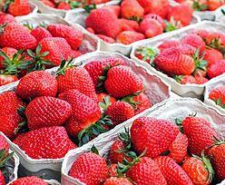Sezon na truskawki. Ceny truskawek mogą wzrosnąć. Jest cena za kilogram