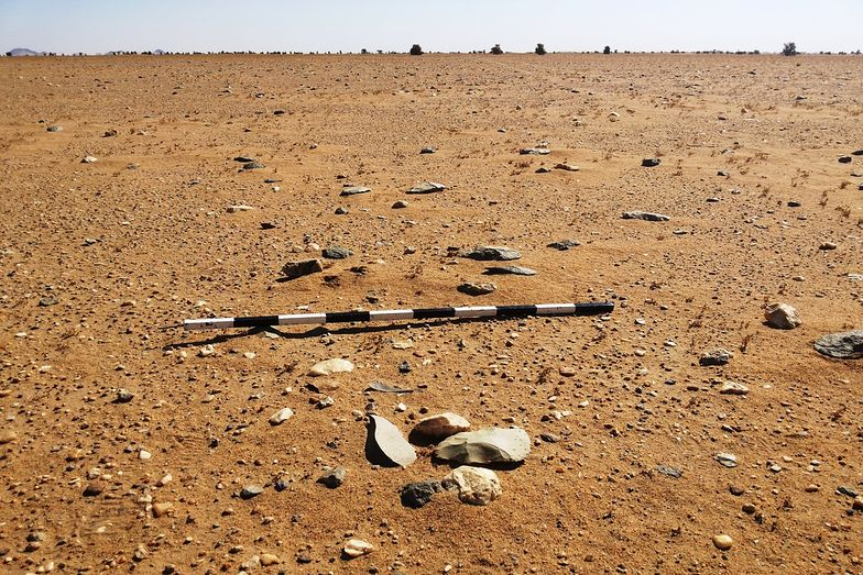 Polacy odkryli najstarsze ślady człowieka