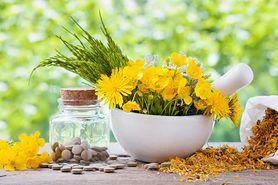 Środki ziołowe na łysienie