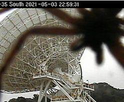 Nagle pojawił się w obiektywie. Zasłonił ogromną antenę satelitarną