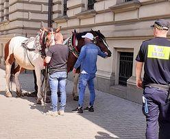 Poniedziałek rano, centrum Krakowa. Cud, że nic się nikomu nie stało