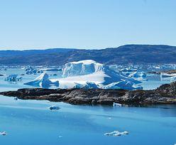 Badali najdalej na północ wysunięty ląd Ziemi. Przez przypadek odkryli nową wyspę