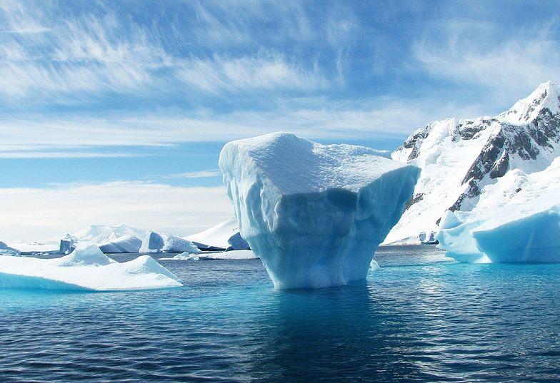 Wirusolog ostrzega. Odkrycie koronawirusa na Antarktydzie ma ogromne znaczenie