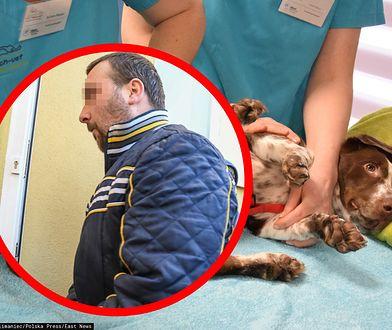 Brutalnie skatował psa Fijo. Zapadł prawomocny wyrok w głośnej sprawie