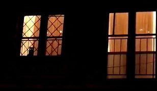 Kot w oknie domu Jarosława Kaczyńskiego