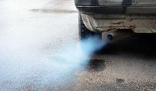 Całkowity zakaz sprzedaży aut spalinowych. Jako pierwsza Norwegia