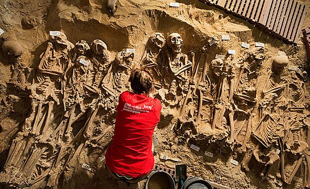 Pod domem handlowym w Paryżu odkryto ponad 200 szkieletów
