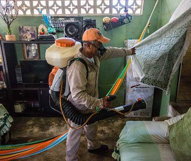 WHO odwołuje stan nadzwyczajny w zw. z epidemią zika