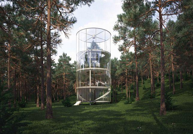 Architekt Aibek Almasov zaprojektował szklany dom, którego centrum stanowi drzewo