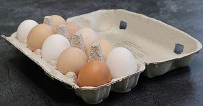 Otworzyli pudełko na jajka. To, co zobaczyli zupełnie ich zaskoczyło