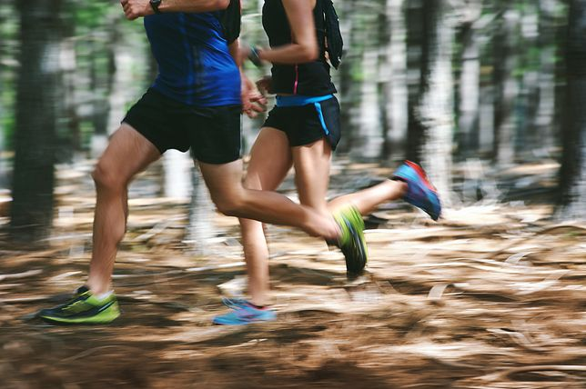 Biegi przełajowe najczęściej odbywają się na trasach prowadzonych przez las.