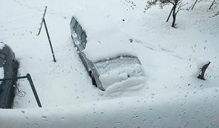 Atak zimy to nie żart, to zdjęcie jest najlepszym dowodem. A to jeszcze nie koniec