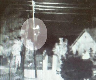 Wandal wdrapał się na słup i zniszczył kamerę