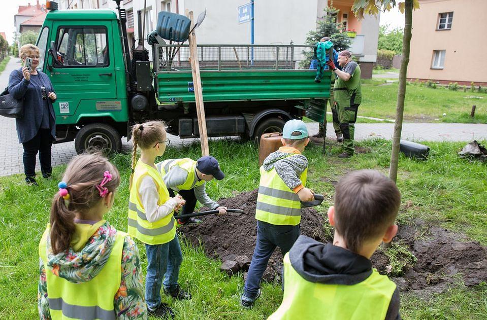 """Katowice. Rusza trzecia edycja progrmu """"wCOP drzewo""""."""