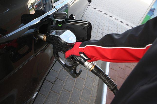 Ceny paliw idą mocno w górę. 5 zł to na niektórych stacjach to już norma