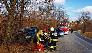 Śląskie. W Niegowonicach niedaleko Zawiercia na DW 790 samochód osobowy uderzył w drzewo.
