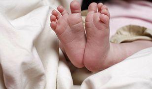 5-miesięczne dziecko walczy o życie. Zarzuty dla matki