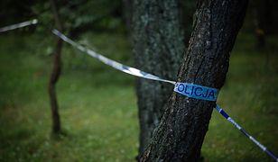 O wypadku została powiadomiona Państwowa Komisja Badania Wypadków Lotniczych