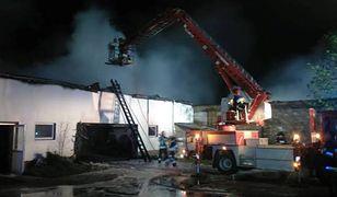 Strażacy całą noc walczyli z pożarem stolarni w Barchlinie