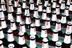 Rewolucja na rynku? Takiego piwa z Żywca jeszcze nie było