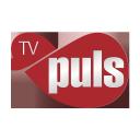 TV Puls
