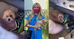 """Joanna Przetakiewicz relacjonuje podróż samochodem z psem MIĘDZY PEDAŁAMI: """"TO NIEBEZPIECZNE"""""""