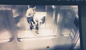 Pitbull zaatakował w windzie. Rzucił się na małego chłopca