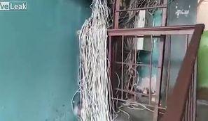 Pnącza z kabli elektrycznych. Elektryk złapał się za głowę