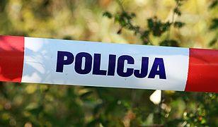 Na ogródkach działkowych w Poznaniu znaleziono zwłoki