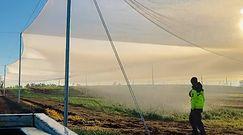 Poranne podlewanie pola. Nagranie z Australii