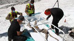 Szczątki kozicy sprzed 400 lat. Niezwykłe, przypadkowe odkrycie w Alpach